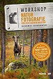Workshop Naturfotografie vor der eigenen Haustür: Die geheimen Profi-Tricks. Tier-, Makro- und Landschaftsfotografie in Deutschland & drumherum