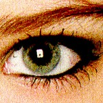 Auge11-Softbox