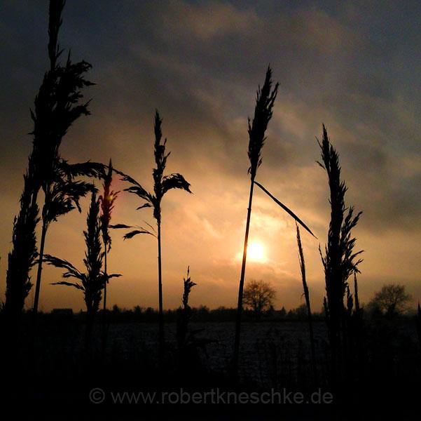 Sonnenuntergang bei Berlin